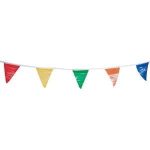 Multi-Color Promotional Pennants